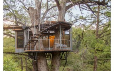 Yoki Treehouse – house on tree to experience nature